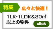 1DK・1LDK&30㎡以上の物件